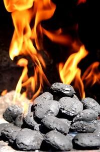 Prashant Modi - coal